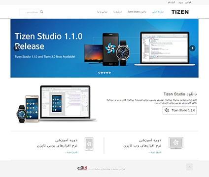طراحی سایت برنامه نویسی تایزن