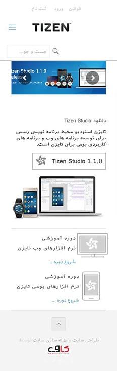 طراحی سایت آموزش تایزن